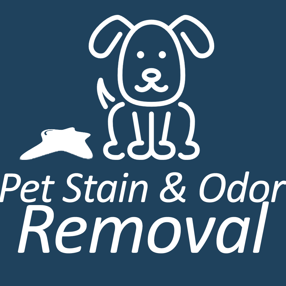 Pet Stain And Odor Removal Cleaning Services